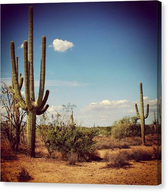 United States Of America Canvas Print - Arizona by Luisa Azzolini