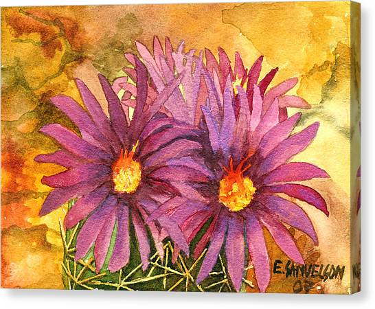 Arizona Pincushion  Canvas Print