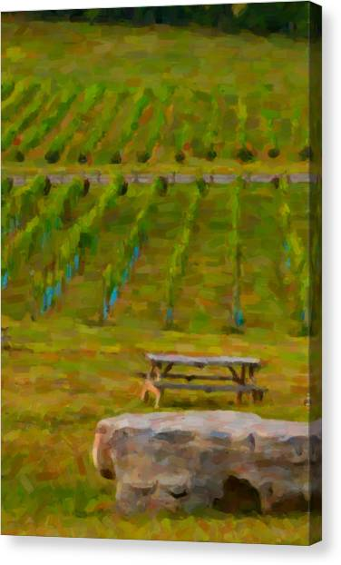 Arrington Vineyards Canvas Print by Paul Bartoszek