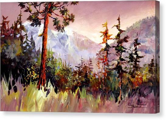 Ashnola Colours Canvas Print