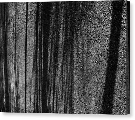 Aspen Shadows Canvas Print