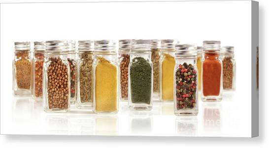Condiments Canvas Print - Assorted Spice Bottles Isolated On White by Sandra Cunningham