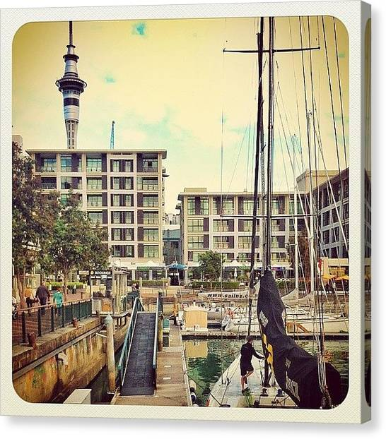 Yachts Canvas Print - Auckland Harbour by Evgeny Poliganov