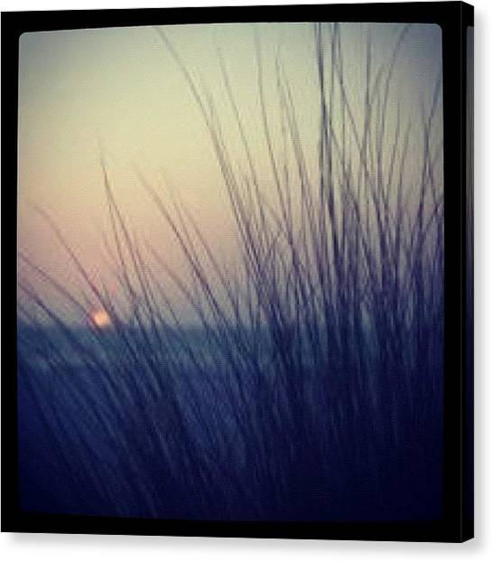 Seagrass Canvas Print - #augpicchallenge #silhouette #seagrass by Rainey Shafer