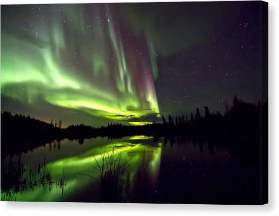 Aurora Rain Canvas Print