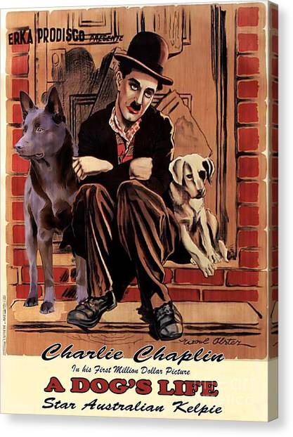 Australian Kelpie - A Dogs Life Movie Poster Canvas Print