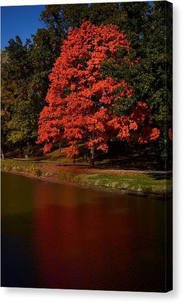 Autum Color Canvas Print