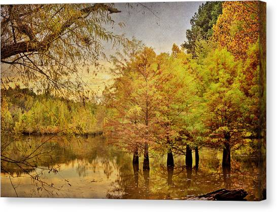 Autumn At The Creek Canvas Print