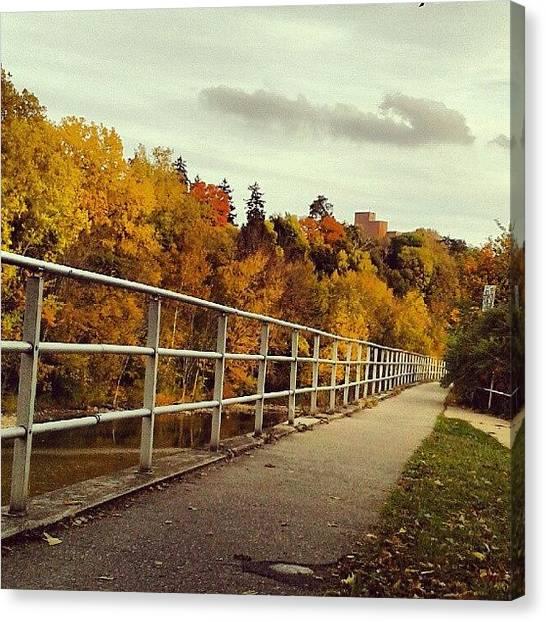Ontario Canvas Print - #autumn #autumncolors #fallphotos by Erica Mason