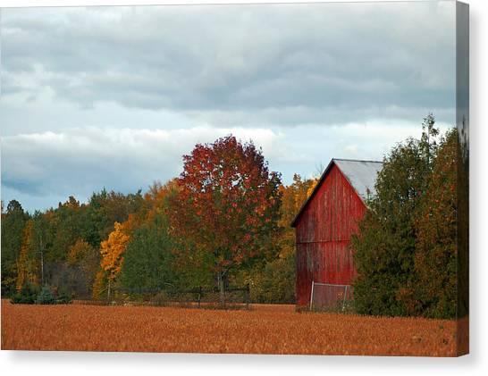 Autumn Barn Canvas Print by Cheryl Cencich