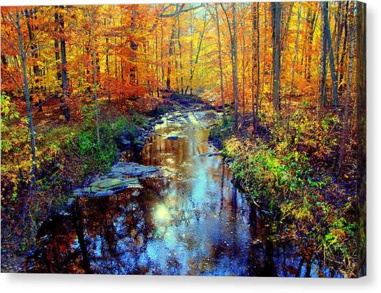 Autumn Colors 10 Canvas Print