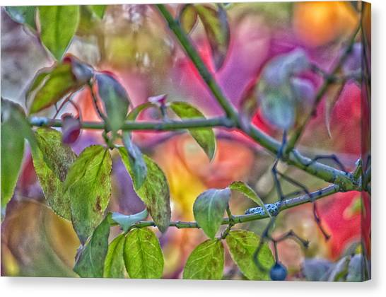 Autumn Crayolas Canvas Print by Ross Powell