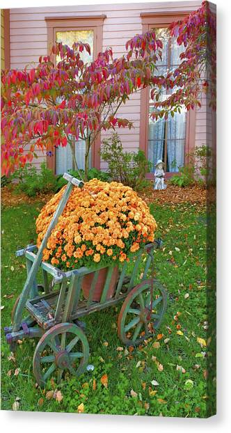 Autumn Display I Canvas Print by Steven Ainsworth