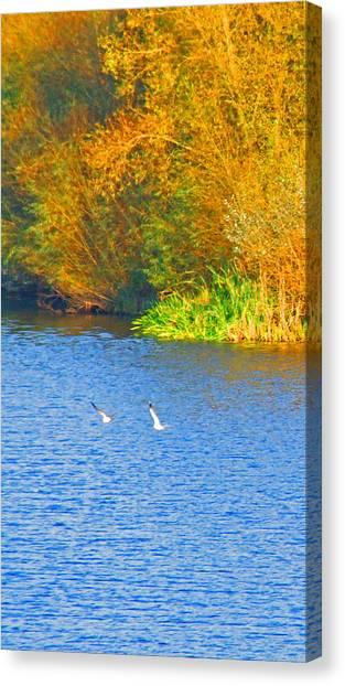Autumn Flight Canvas Print by Bai Qing Lyon