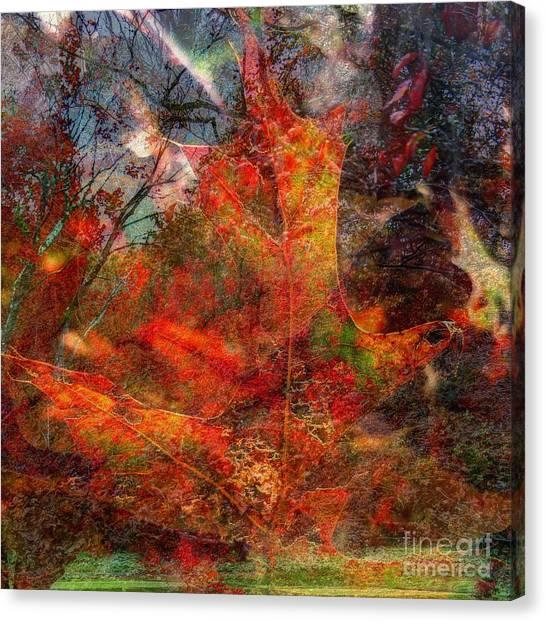 Autumn Fusion 2 Canvas Print