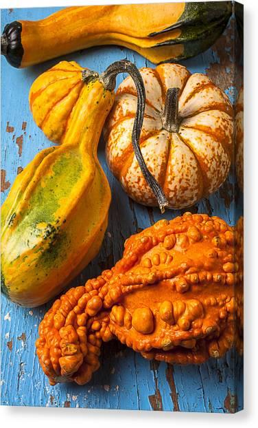 Autumn Art Canvas Print - Autumn Gourds Still Life by Garry Gay
