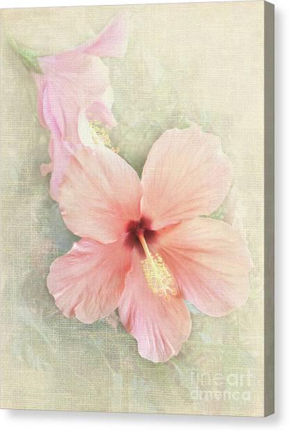 Autumn Hibiscus Canvas Print