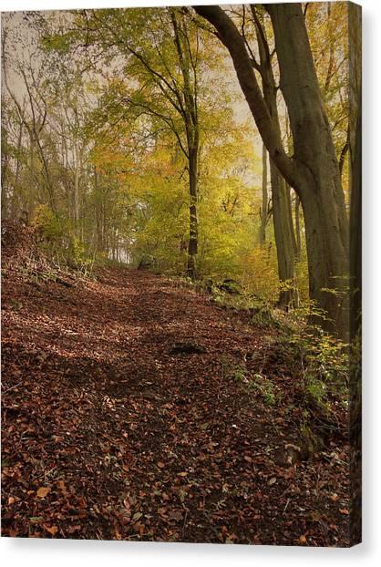 Autumn In Brantingham Woods Canvas Print