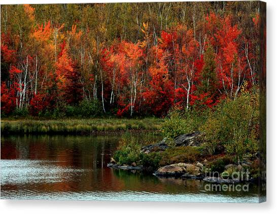 Autumn In Canada 2 Canvas Print