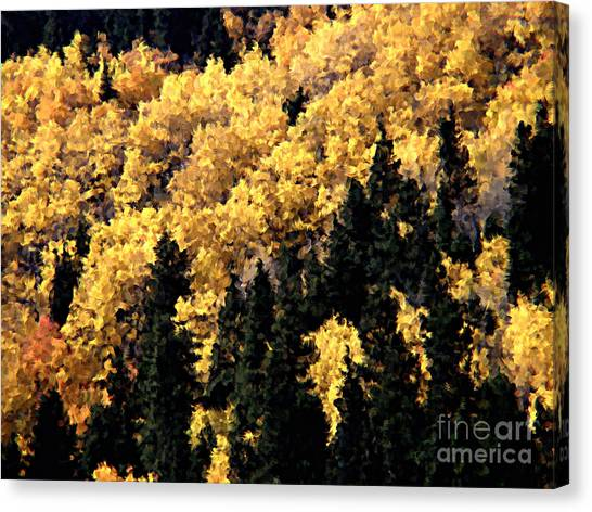 Autumn In Colorado Painting Canvas Print