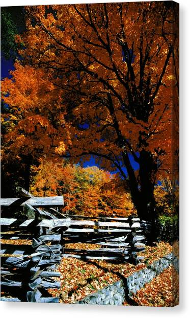 Autumn In Holderness Canvas Print