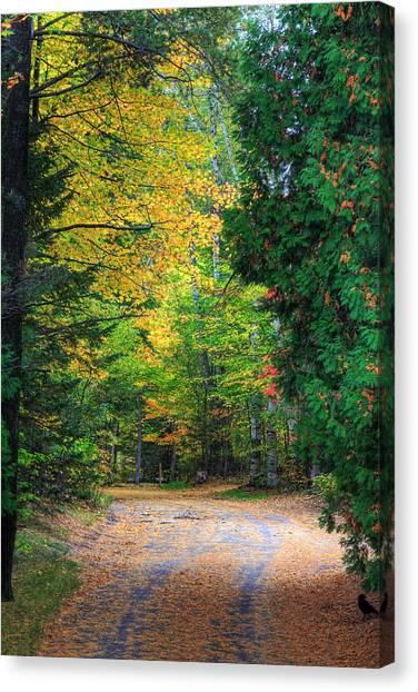 Autumn Canvas Print by Kean Poh Chua