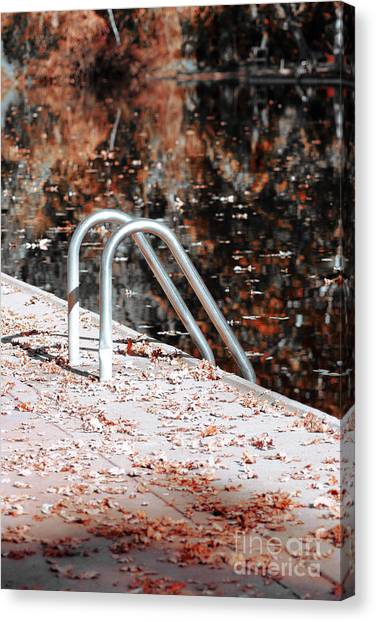Autumn Ladder Canvas Print by David Taylor