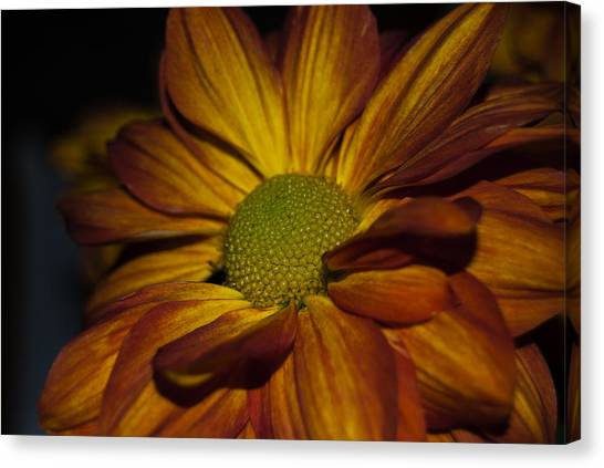 Autumn Mum Canvas Print