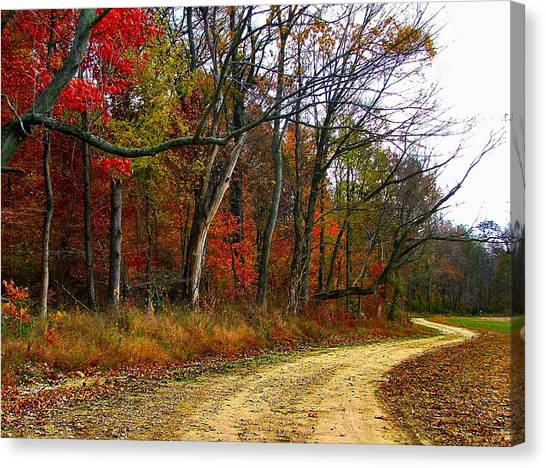Dream Catcher Gallery Canvas Print - Autumn On Bottomland Road by Julie Dant