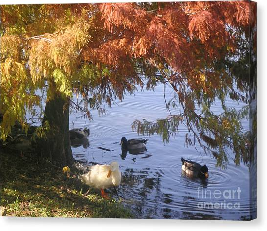 Autumn Peace Canvas Print by Lucyna A M Green
