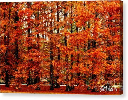 Autumn Red Maple Landscape Canvas Print
