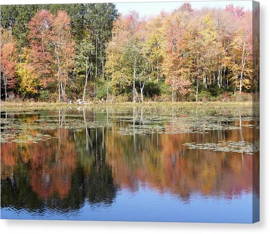 Autumn Reflections Canvas Print by Kim Galluzzo Wozniak
