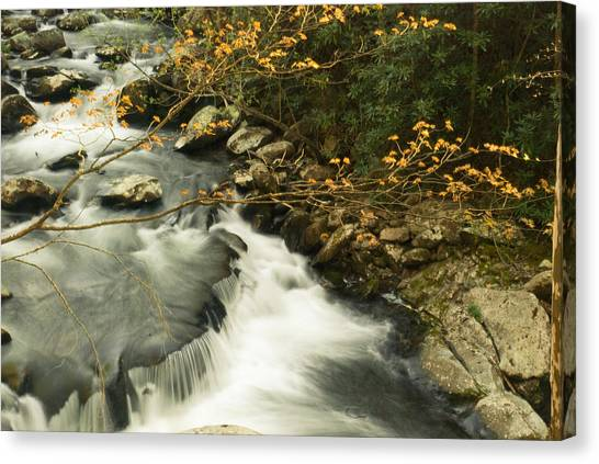 Autumn Spill Canvas Print