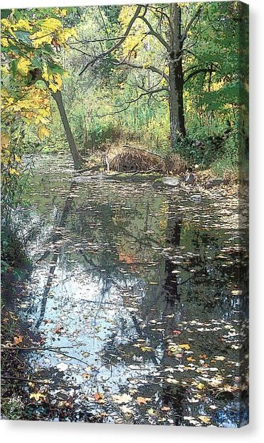 Autumn Vale Canvas Print