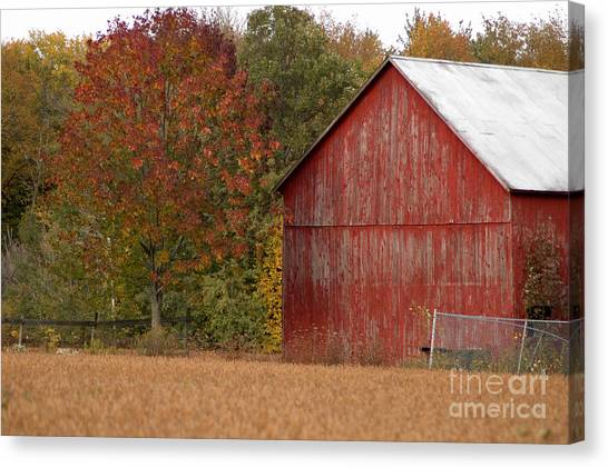 Autumnal Barn Canvas Print by Ginger Harris