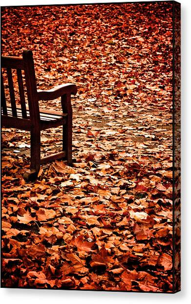 Autumnal Colours Canvas Print