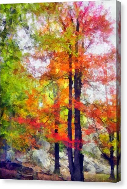 Autumnal Rainbow Canvas Print