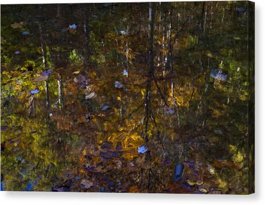 Autumnal Reflection Canvas Print by Jim Neumann