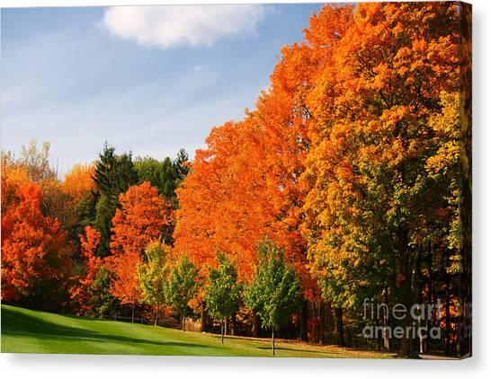Autumn's Artwork Canvas Print