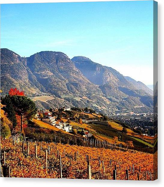Italy Canvas Print - Autunno In Alto Adige - Autumn In South by Luisa Azzolini