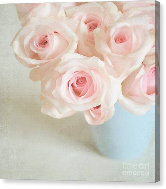 Baby Pink Roses Canvas Print