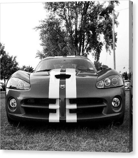 Vipers Canvas Print - Bad Ride by Dan Piraino