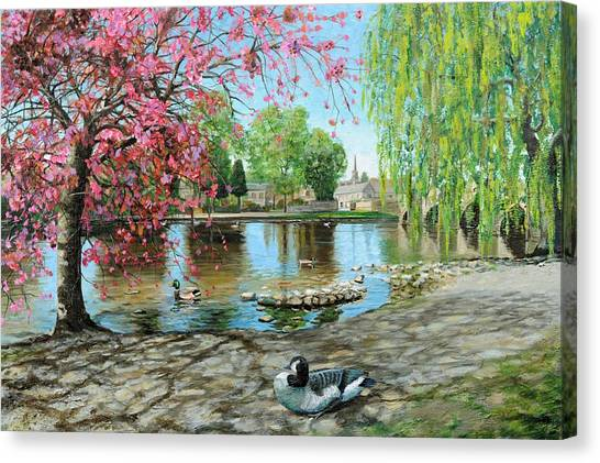 Tree Blossoms Canvas Print - Bakewell Bridge - Derbyshire by Trevor Neal