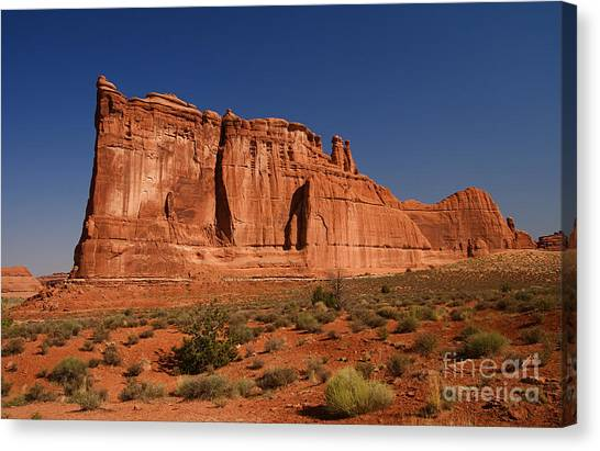 Balanced Rock Arches Np Canvas Print by ELITE IMAGE photography By Chad McDermott