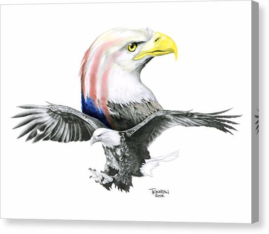 Eagle Scout Canvas Print - Bald And Bold Eagle by Trenton Hill