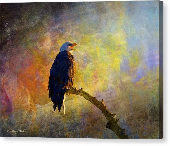 Bald Eagle Awaiting Sunrise Canvas Print