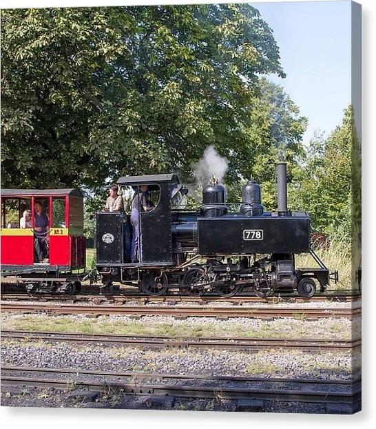 Steam Trains Canvas Print - Baldwin Wd Loco No 778 At Leighton by Dave Lee