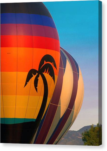 Balloon Launch Canvas Print by Carol Norman