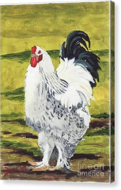 Ballymaloe Cockerel Canvas Print