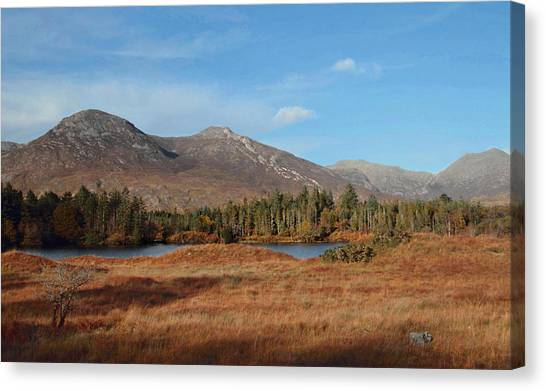 Ballynahinch Canvas Print by Peter Skelton